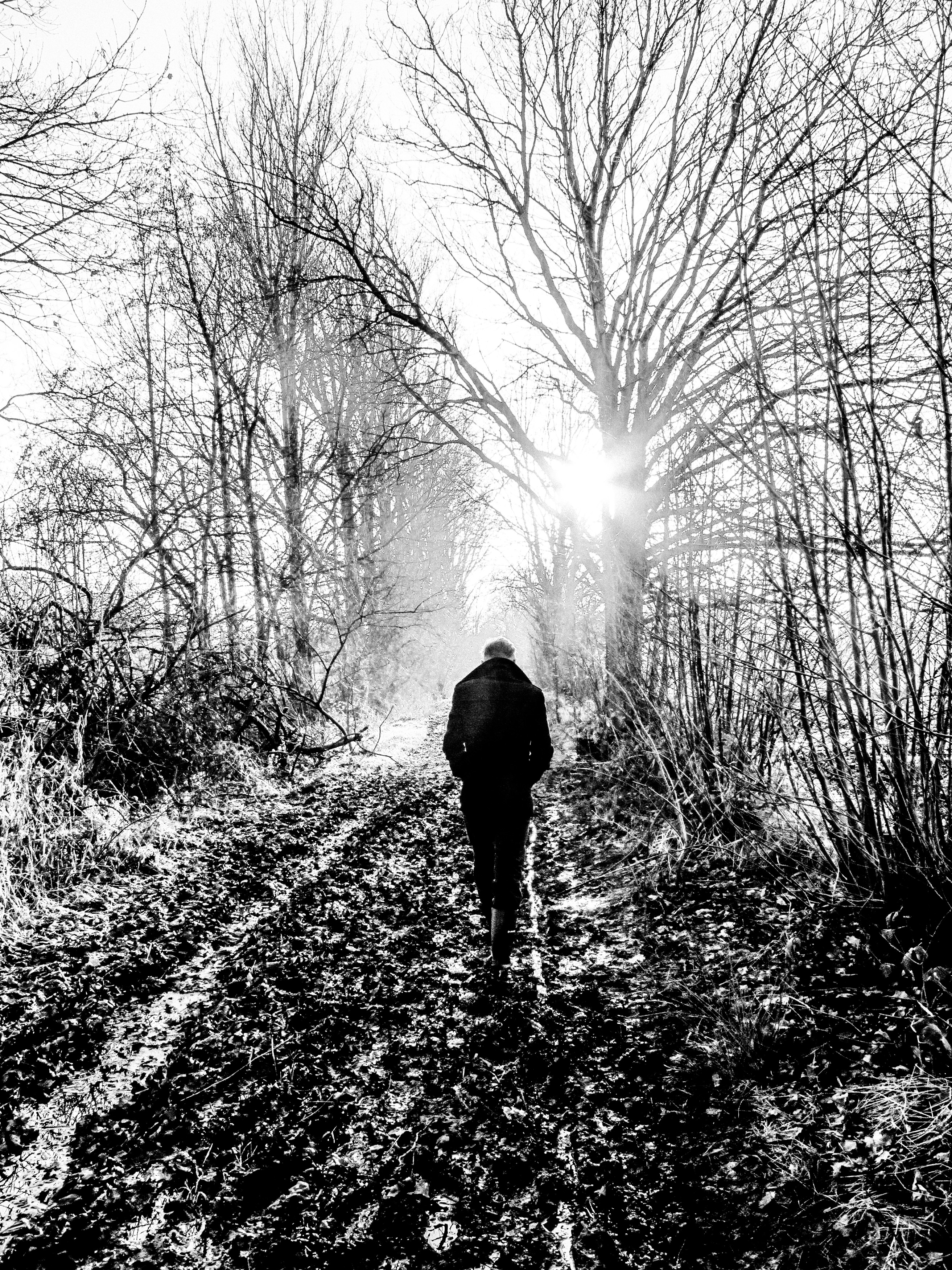 Kreng in the woods, photo by Nathalie Tabury