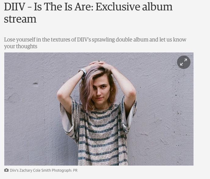 DIIV_Guardian